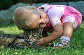 Katze und Baby: Kleinkind schmust mit Katze