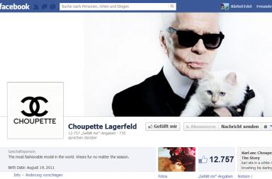 Facebook Seite Choupette