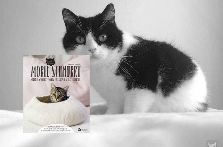 Buchtipp: Morle schnurrt – Moderne Wohnaccessoires für Katzen selbst gemacht