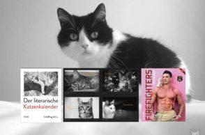 Katzenkalender 2020