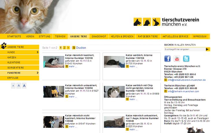 Screenshot Fundkatzen