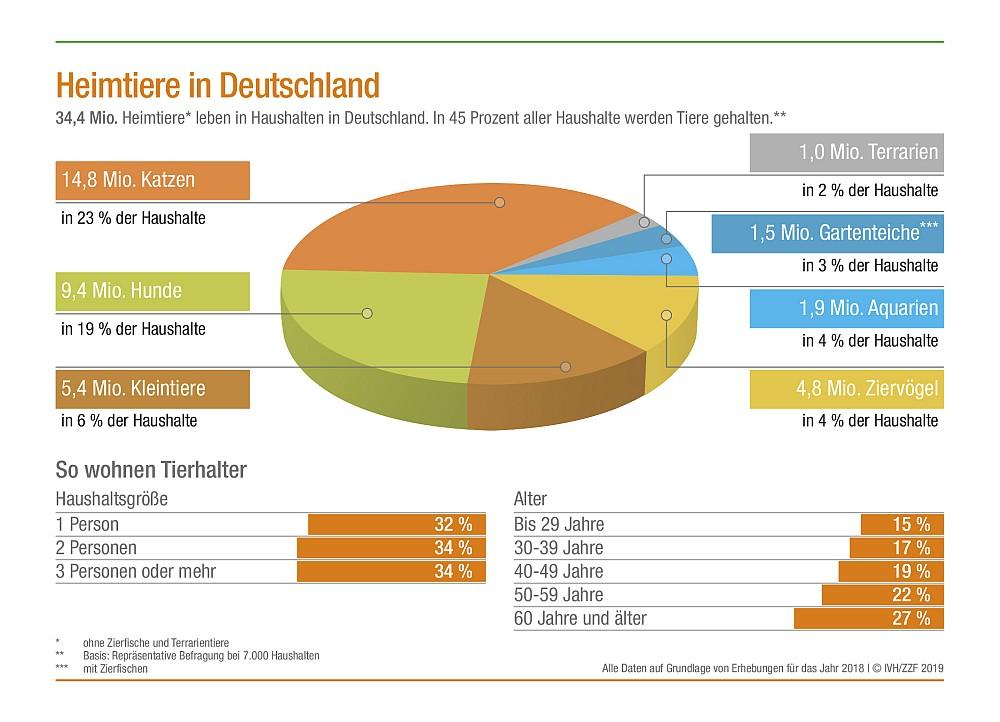 Wie viele Katzen leben in Deutschland?