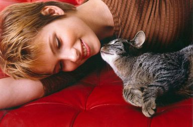 Katze und Frau auf Sofa