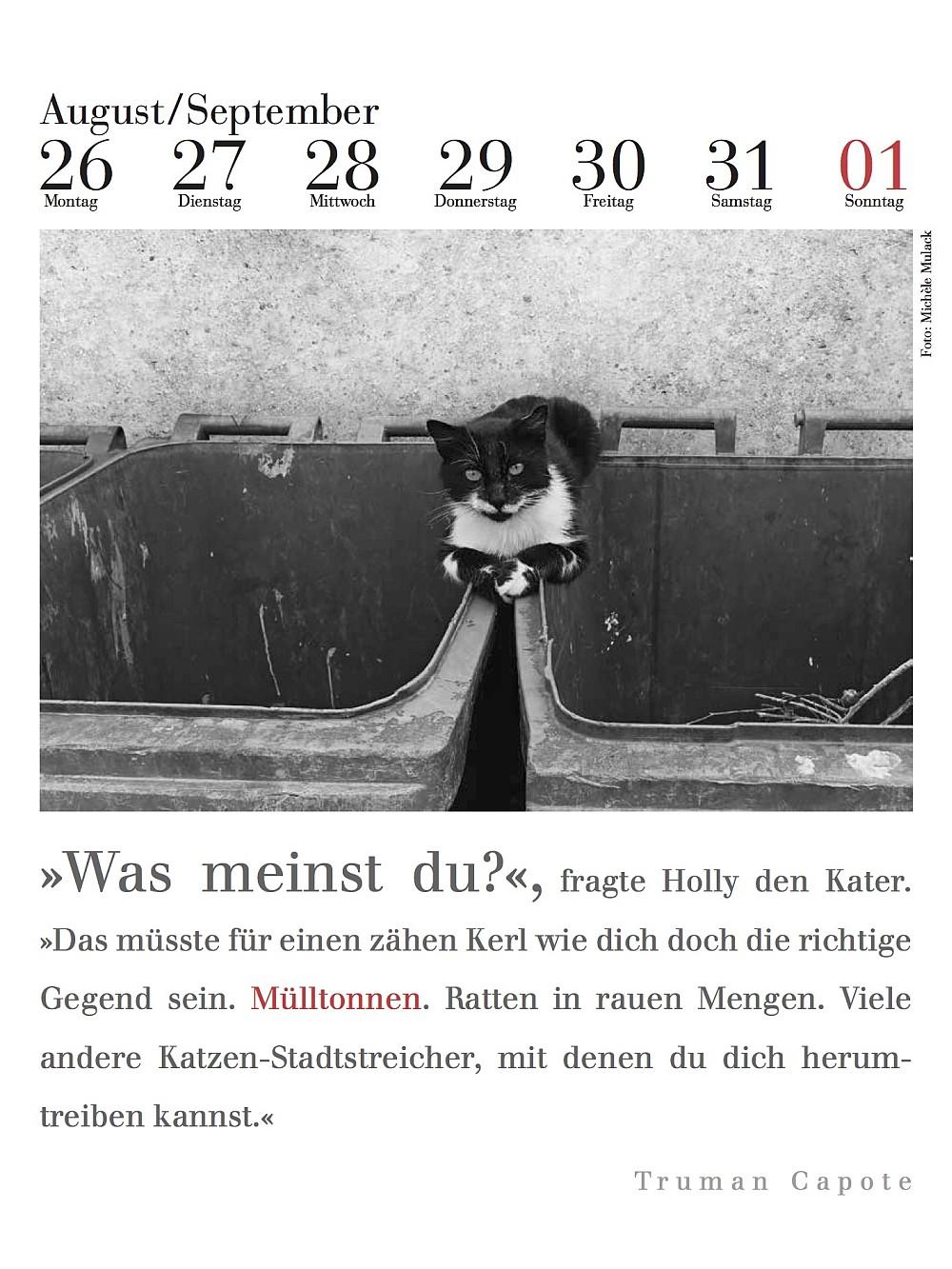 Kalenderblatt literarischer Katzenkalender 2019