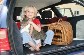 Mädchen mit Katze im Auto
