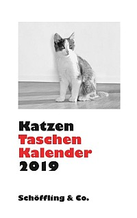 Katzen Taschenkalender 2019