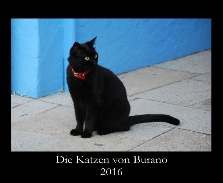 Katzenkalender: Die Katzen von Burano, Titel