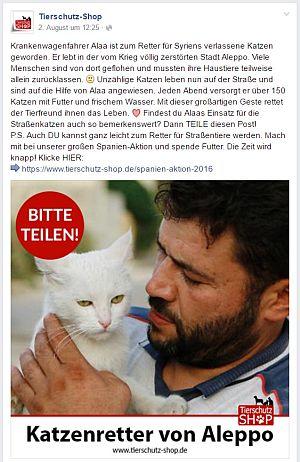 Katzenretter von Aleppo