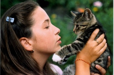Katzen richtig tragen: Mädchen guckt Katze an