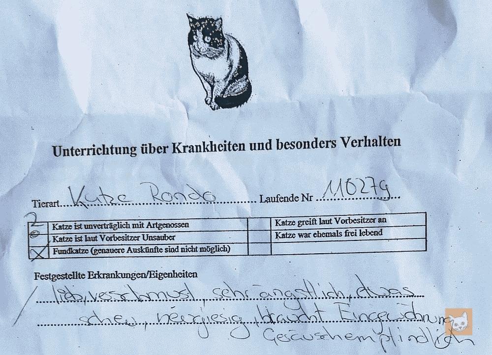 """Merkblatt vom Tierheim über """"Rondo"""" (Ausschnitt)"""