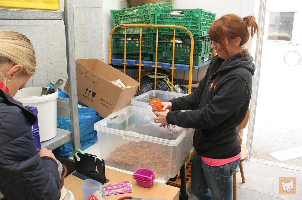 Helferinnen packen Leckerlis aus