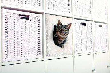 Katzenhöhle für Kallax-Regal von Trixie