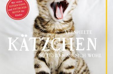 Cover Verspielte Kätzchen