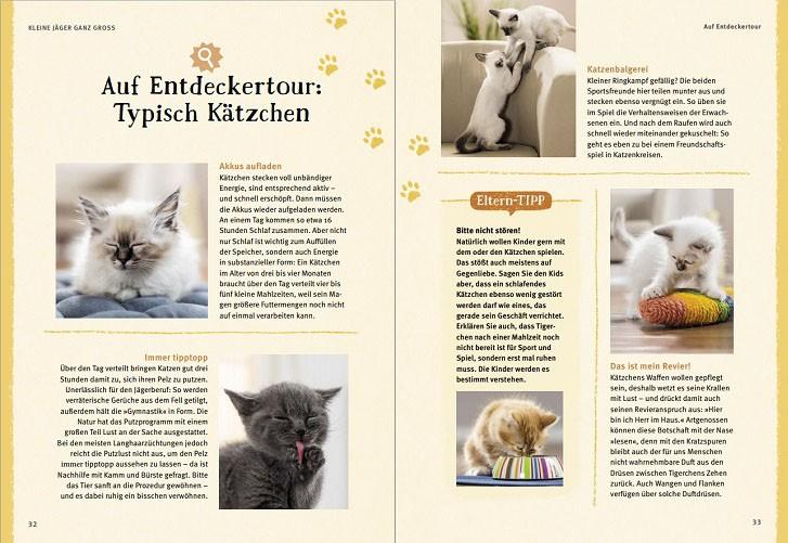 Verspielte Kätzchen, Seiten 32 und 33
