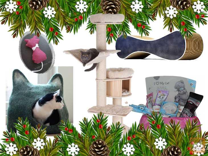 Weihnachtsgeschenke für Katzen