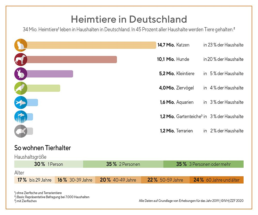 Wie viele Katzen leben in Deutschland