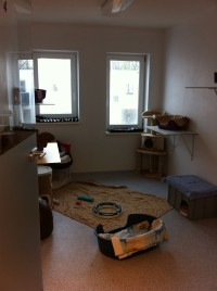 Katzendorf Quarantäne-Zimmer